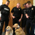 Joplin Missouri Lutherans, Comfort Dogs Shot in Drive By Shooting