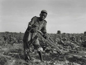 Dorothea Lange - Sharecroppers